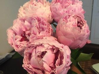 Trader Joe's Flowers!