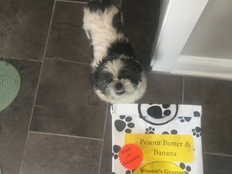 Winston's Gourmet Dog Treats!