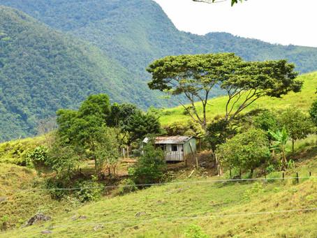 El Pato resiste: la lucha ambiental de la comunidad donde nacieron las FARC