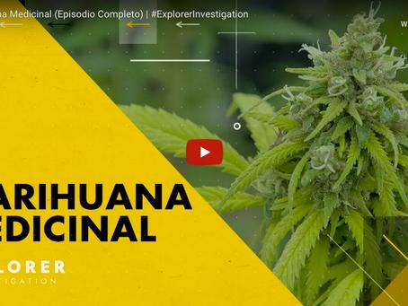 Marihuana medicinal en América Latina