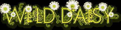 Wild_Daisy_horrizon_sm.png