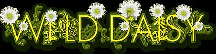 Wild_Daisy_Logo2 copy.png