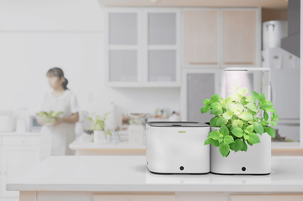 Grobo Pods - a modular, tabletop growing system