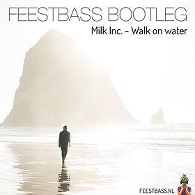 Cover walk on water klein.jpg