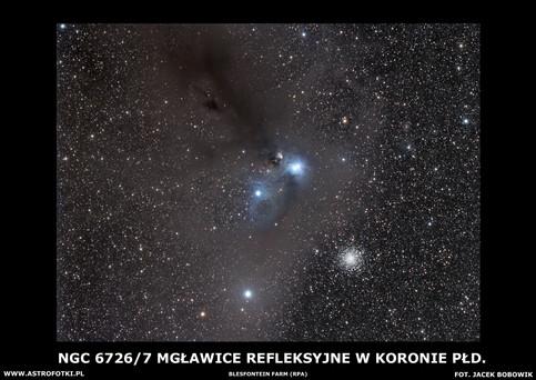 Anteater Nebula