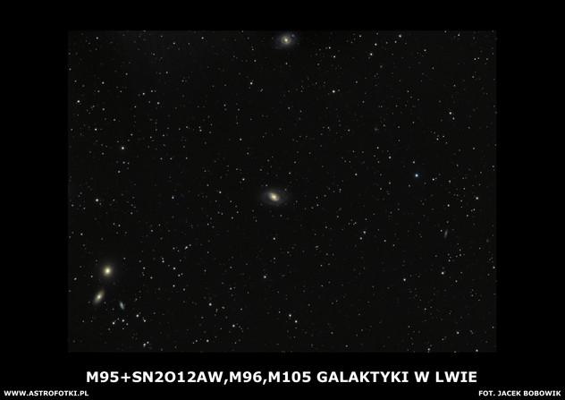 Galaxies in Leo
