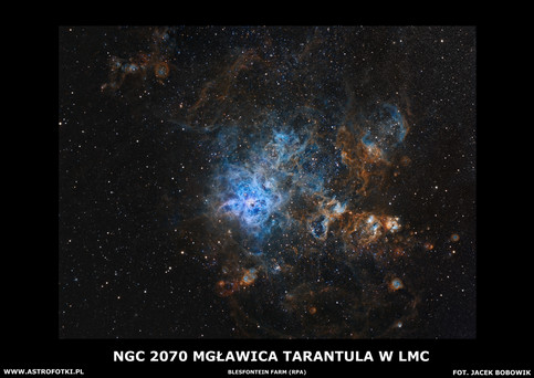 Tarantulla Nebula