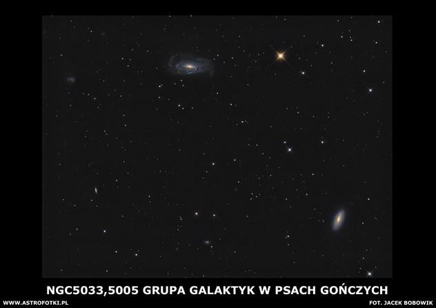 The spiral galaxies in Canes Venatici