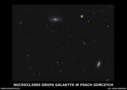 The spiral galaxies in Canes Venatici