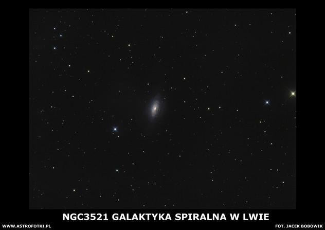 Spiral galaxie in Leo