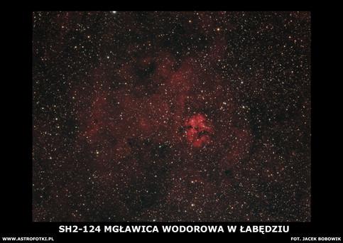 Nebula in Swan