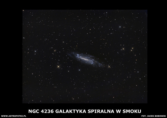 Spiral galaxy in Draco