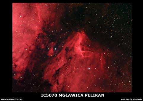 Pellican nebula