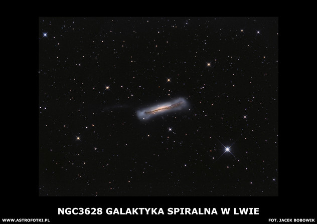 NGC3628 galaxy in e Leo