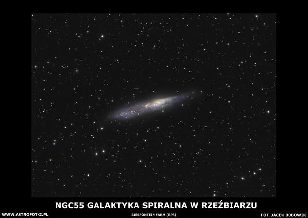 Galaxy in Sculptor