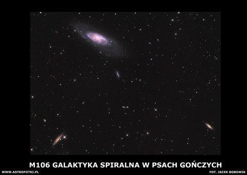 Spiral galaxy in the constellation Canes Venatici