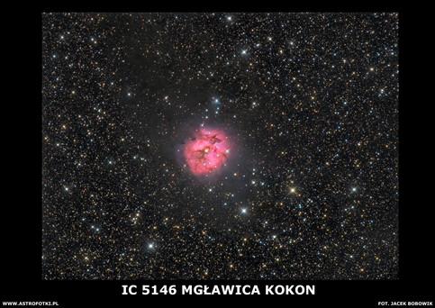 Cocon Nebula