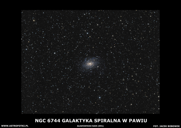 Galaxie in Pavo