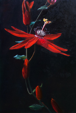 Red Passion Flower by Elena Valerie