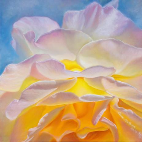 Sun Rose by Elena Valerie