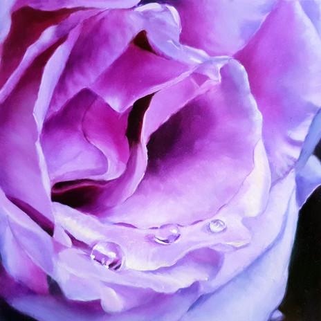 Blue_Moon_Rose_Elena_Valerie