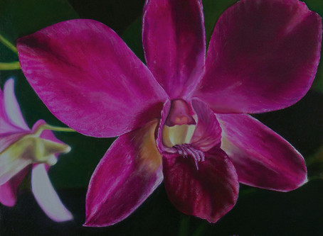 """""""The Magenta Orchid"""" - oil painting"""