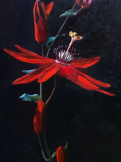 """Red Passion"" oil painting"