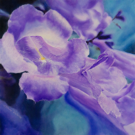 Jacaranda Flower by Elena Valerie
