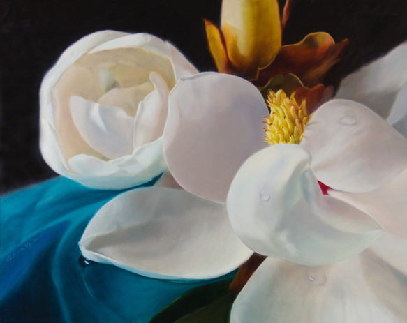 Magnolia Flower by Elena Valerie