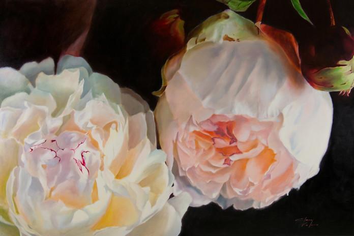 Peony Flowers by Elena Valerie
