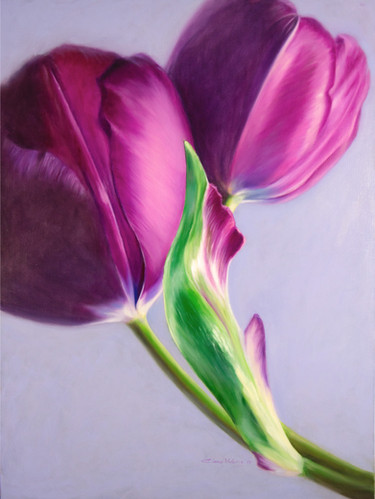 Story of the Tulip by Elena Valerie