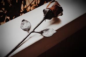 Custom Rose for 'Kinnon & Co'