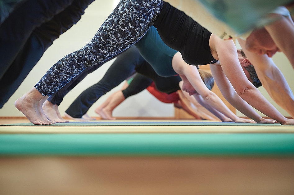 work life yoga. manfred steinmayr steyr