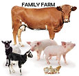 Good Gifts-family farm.jpg