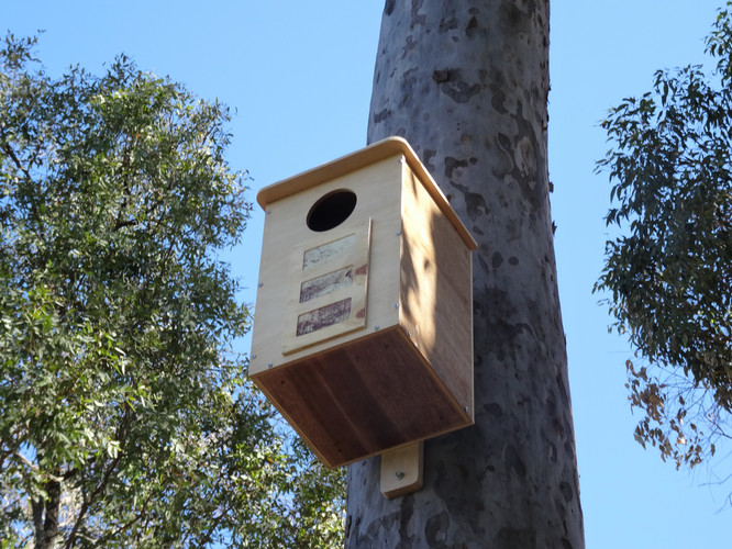Nest Box Installation & Monitoring