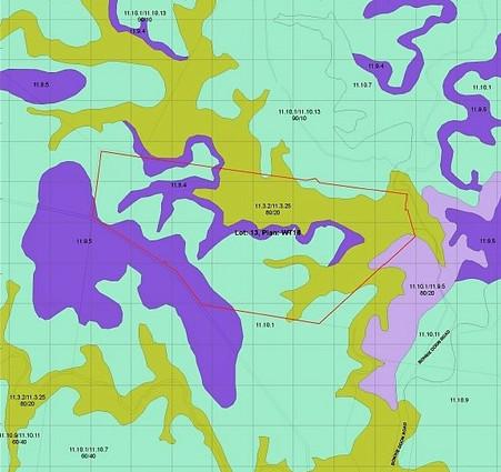 Regional Ecosystem Mapping & PMAVS