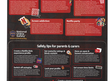 NETFLIX Important Dos and Don'ts