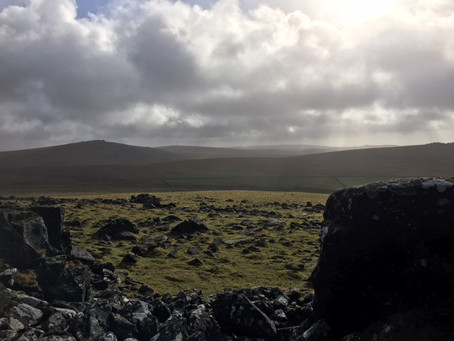 Peace and Tranquility on Dartmoor