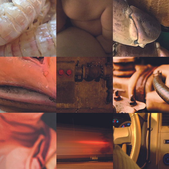 themes-x9.jpg