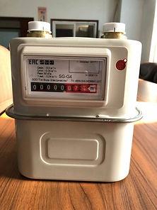 Счетчик газовый SG-G4
