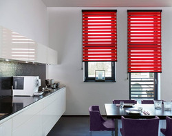 Duorol/vision blinds
