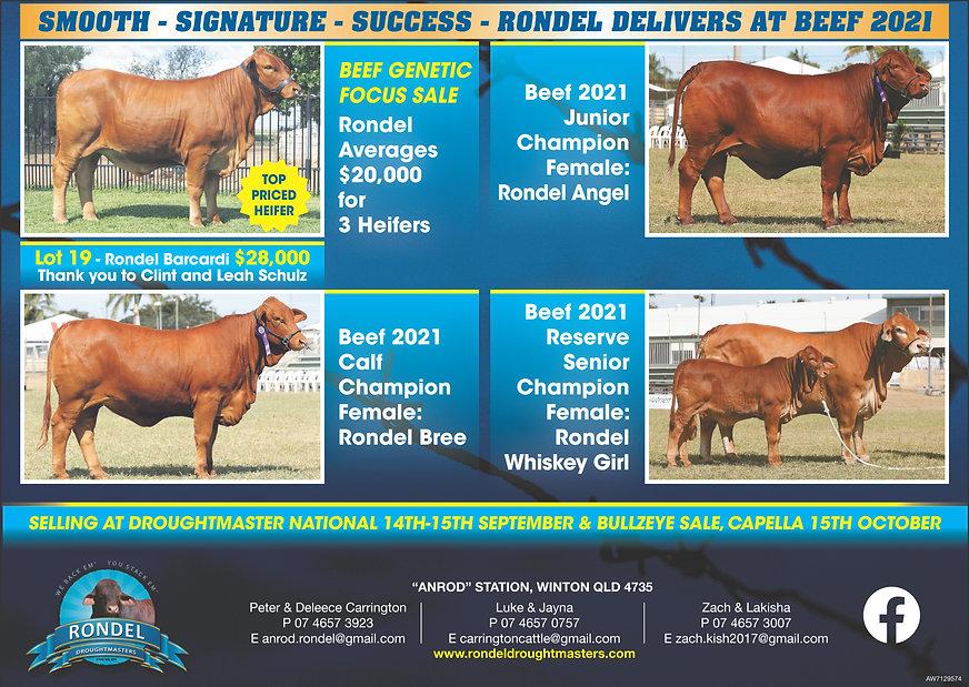 Rondel Beef Results.jpg