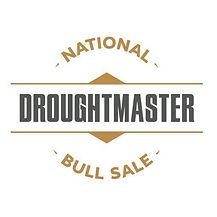 DN Logo.jpg