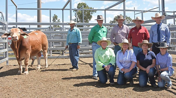 QCL Vendor & Buyer Pictures.jpg