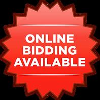 online bidding 300x300.png