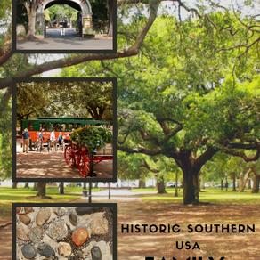 Historic Southern Coast: Family Road Trip