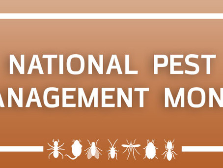 """Another National """"Holiday"""" (AKA: Pest management saves the world!)"""