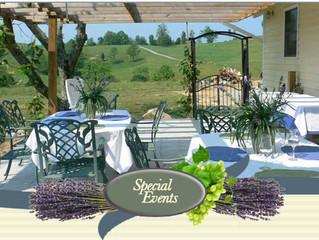 Celie's Entertaining Wine Lovers at Beliveau Estate This Summer!