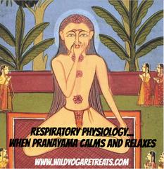 Respiratory Physiology of Pranayama