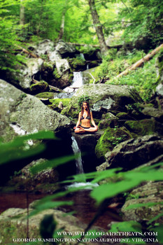 The Power of Nature: Ecotherapy
